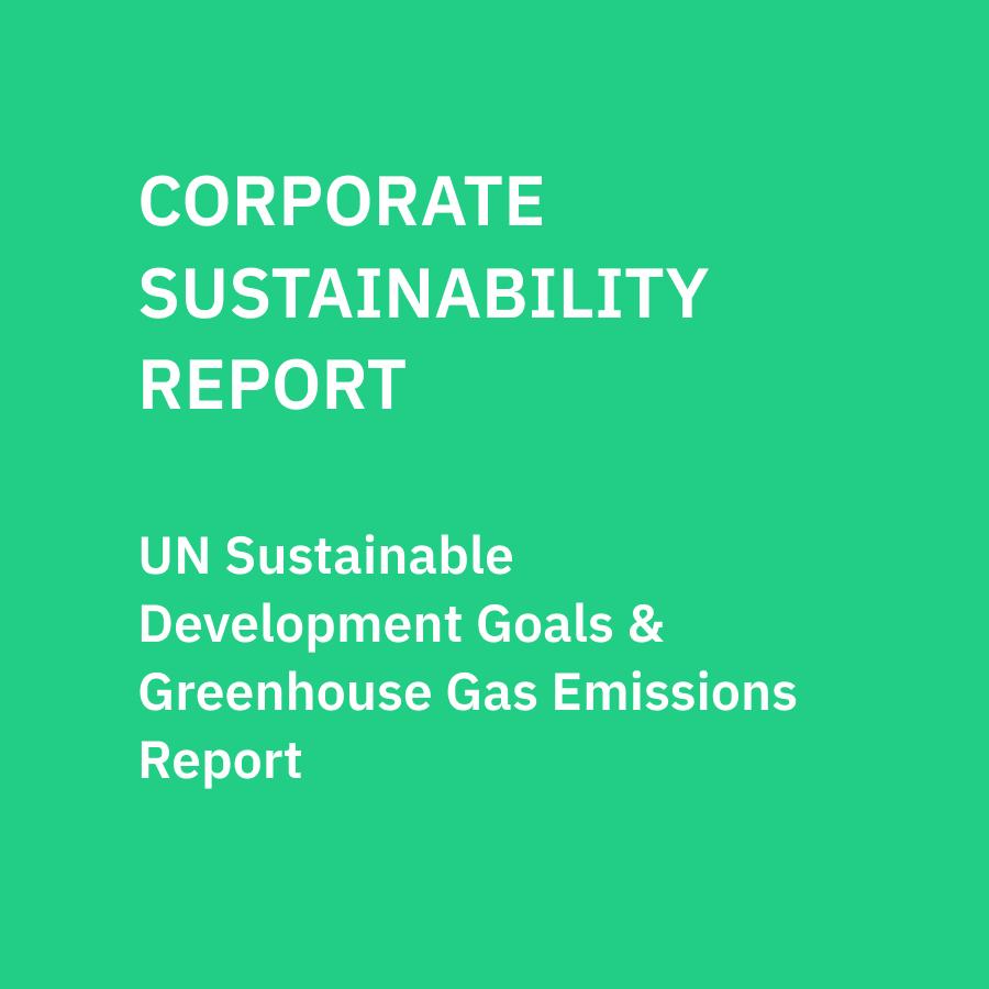 Corporate Sustainability Report: 2020
