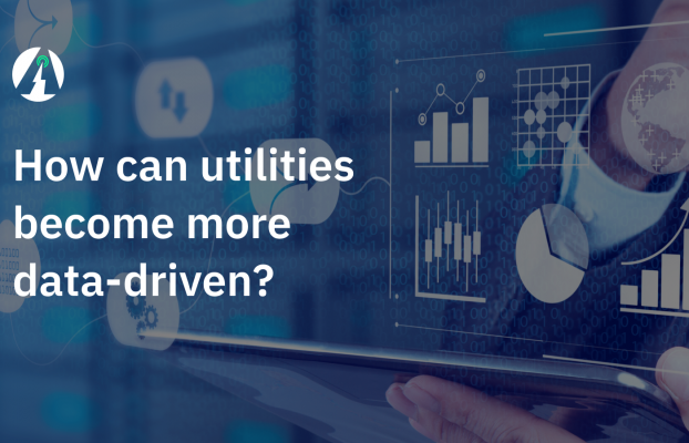 How Can A Utility Become More Data-Driven?